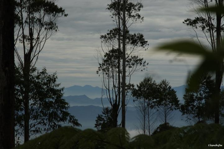 Pemandangan dalam perjalanan ke hutan Ki Hujan