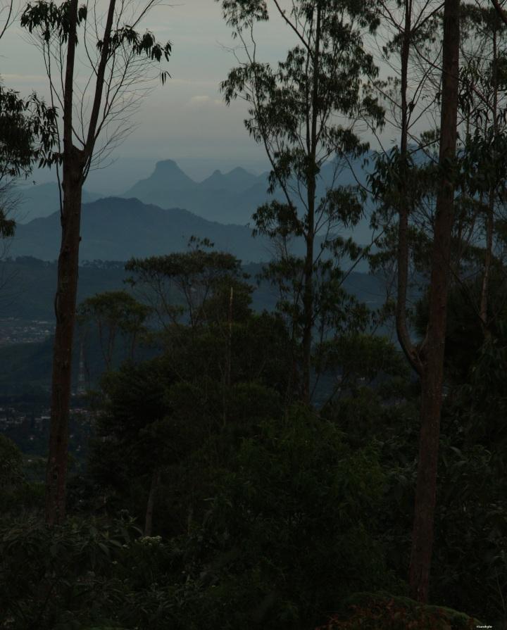Pemandangan dari Sarongge